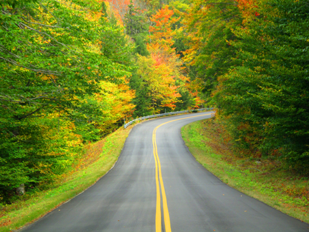 fall-road-photo