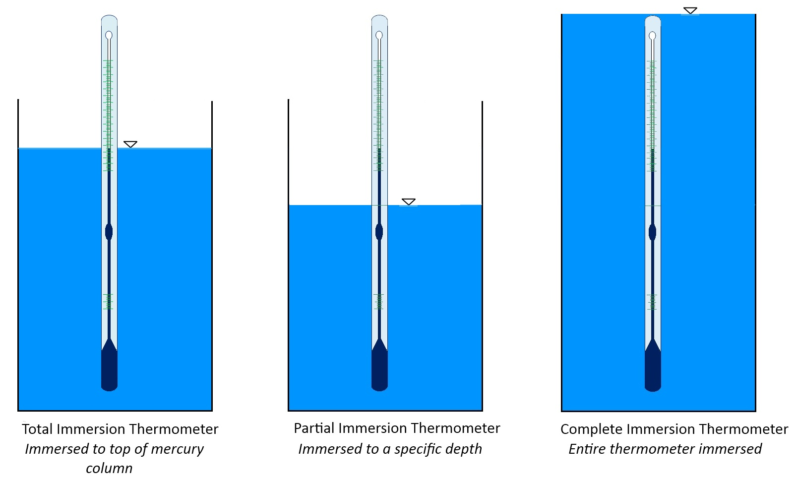 The Anatomy of a Liquid-in-Glass Thermometer